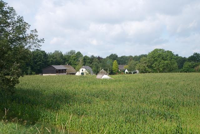 6. Landschap