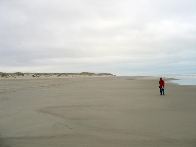16. Strand