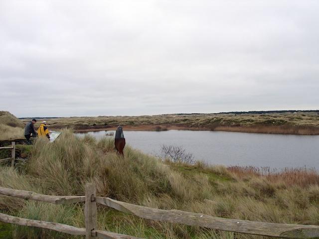 20. Duinmeer