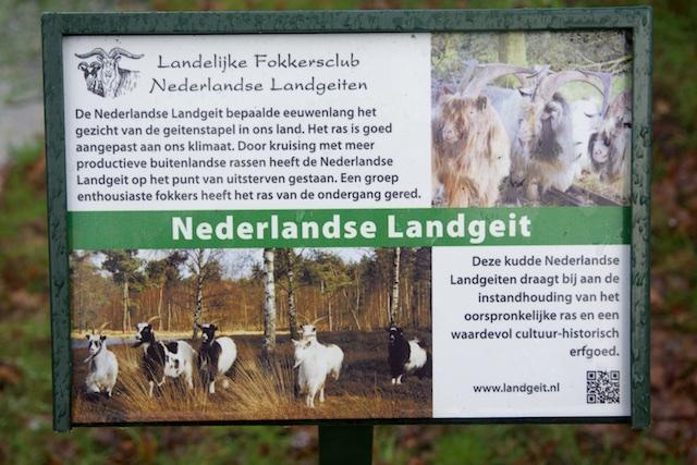 28. Info geiten