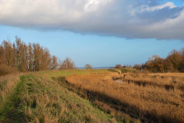 33. Grasdijk