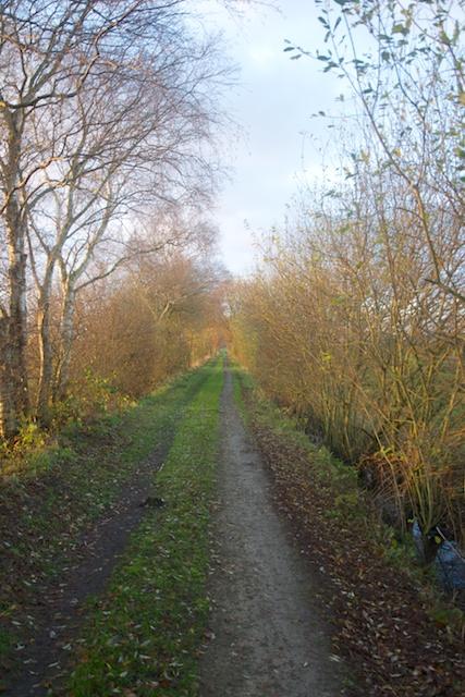 58. Landweg