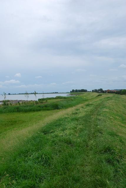 81. Grasdijk